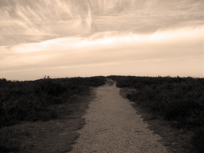 photoblog image road to nowhere...